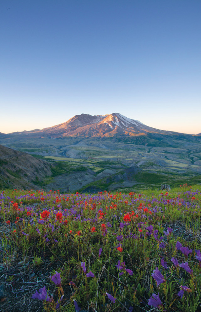 16 Best Mount St. Helens Hikes