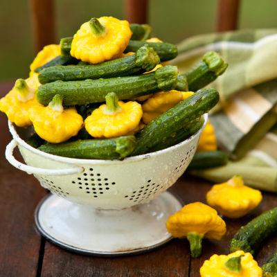 Zucchini lhhcpu