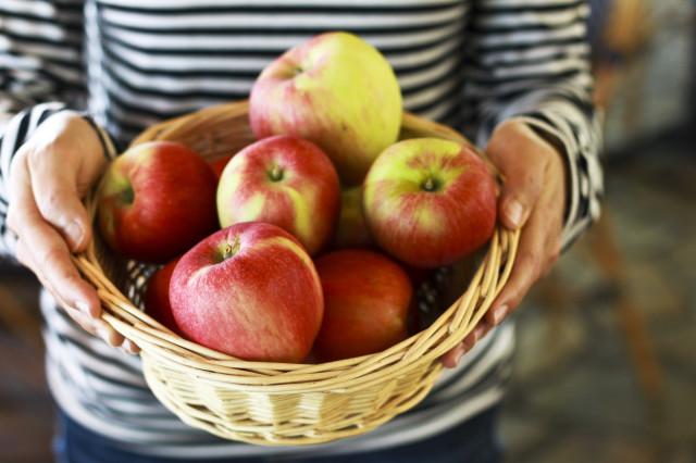 0912 st honore apple pastries elo4hr
