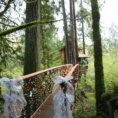 Honeymoon treehouse 2 jifrrv