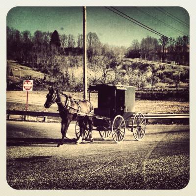 Amish1 f8z2cf