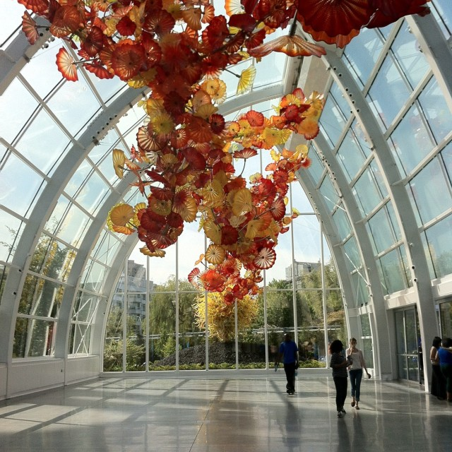 Chihuly14 xc2qzx