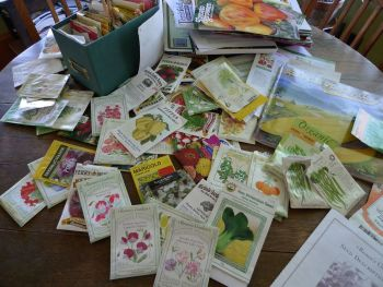 vegetable seeds, seeds, spring starts, vegetables