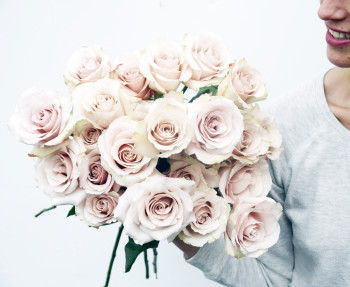 fieldwork flowers, eco roses, sustainably grown roses, california roses, valentine's day