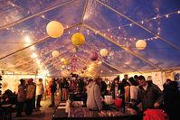 Winterfest feb 2013 msmexs