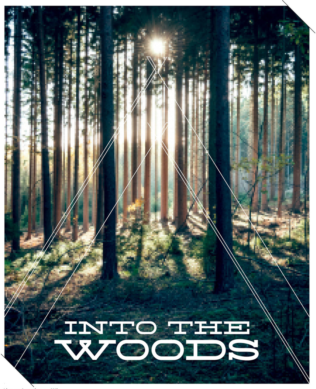 0515 into the woods main ev19oy