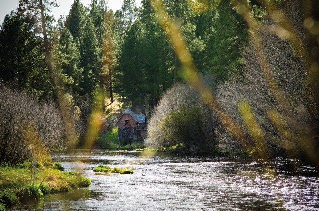 The 10 best beaches rivers and pools around portland for House on the metolius