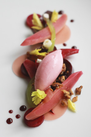 Genoa's rhubarb and beets