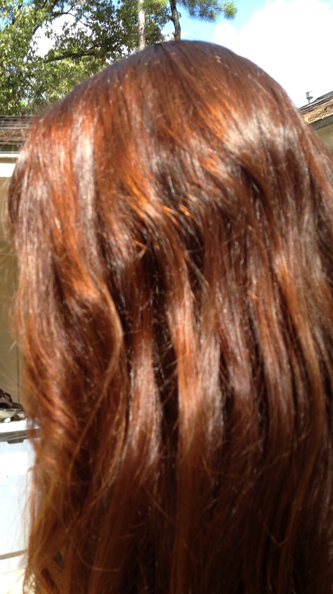 Henna Mehndi Hair Colour : Henna hair dye to the rescue houstonia
