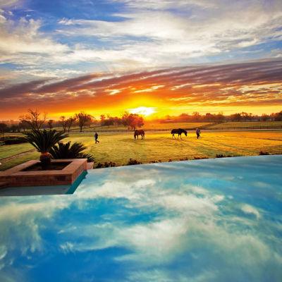 Cover sunrise horses dos brisas january 2016 nxd94i