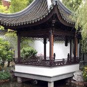 Chinese qaza85