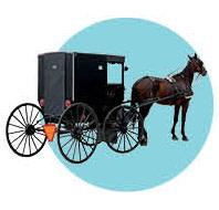 0214 aspen goes grey horse jmdqta