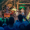 Thumbnail for - Pickathon Music Festival
