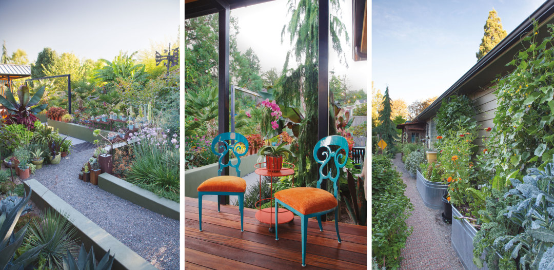 This Dramatic Colorful And Playful Portland Garden Has It All Portland Monthly