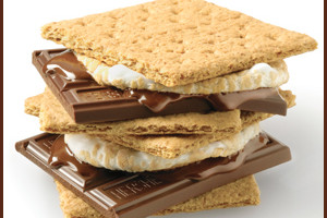 National smores day ug2xsc
