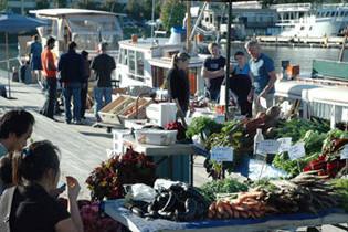 Dockside market mecdgj