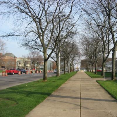 Republic offices in columbus  trees along sidewalk mhv0k5
