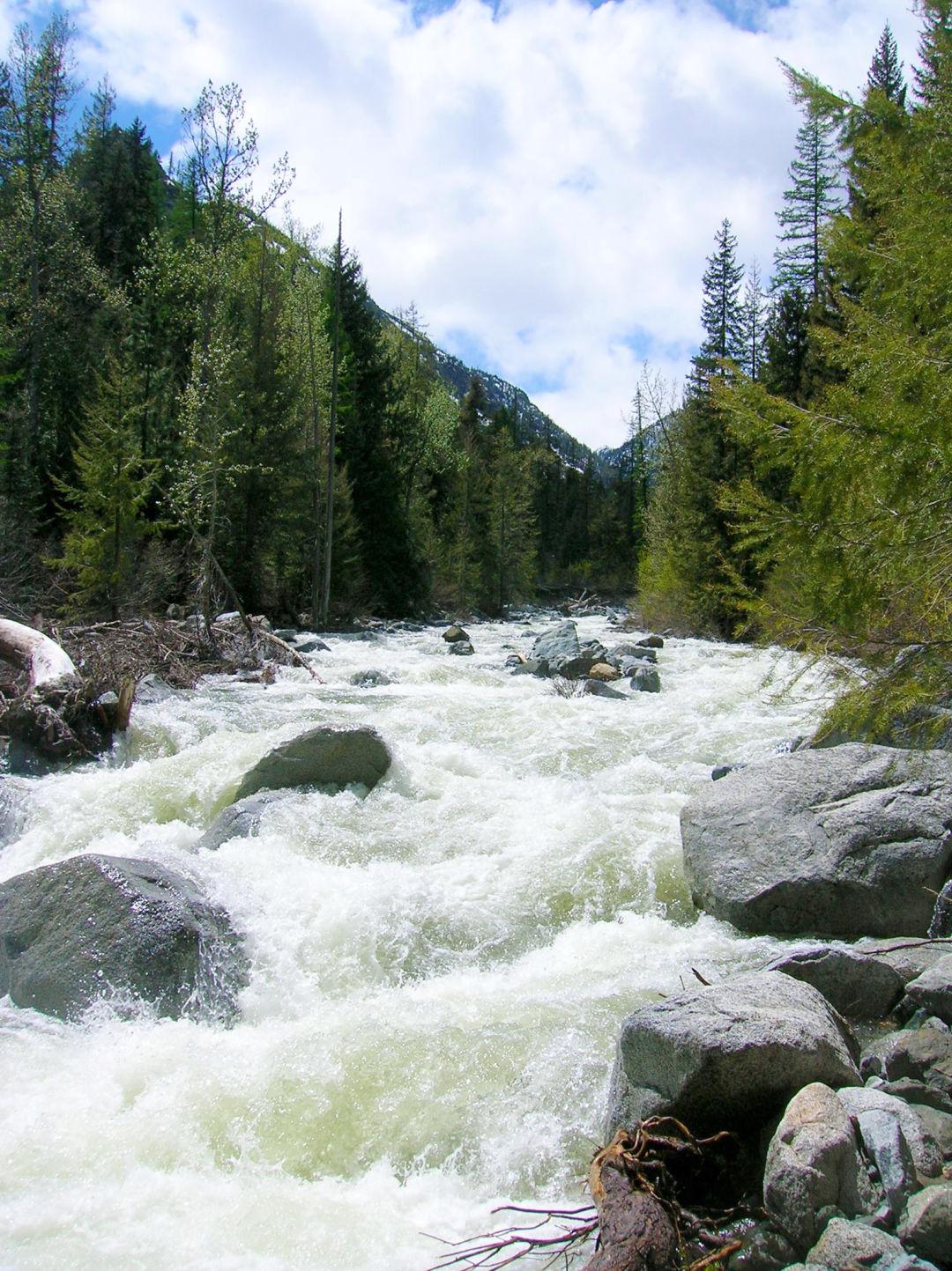 Ingalls creek yibnk3