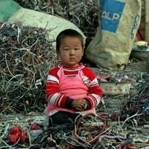 3. greenpeace china natalie behring gp0hc5 pmdcdl