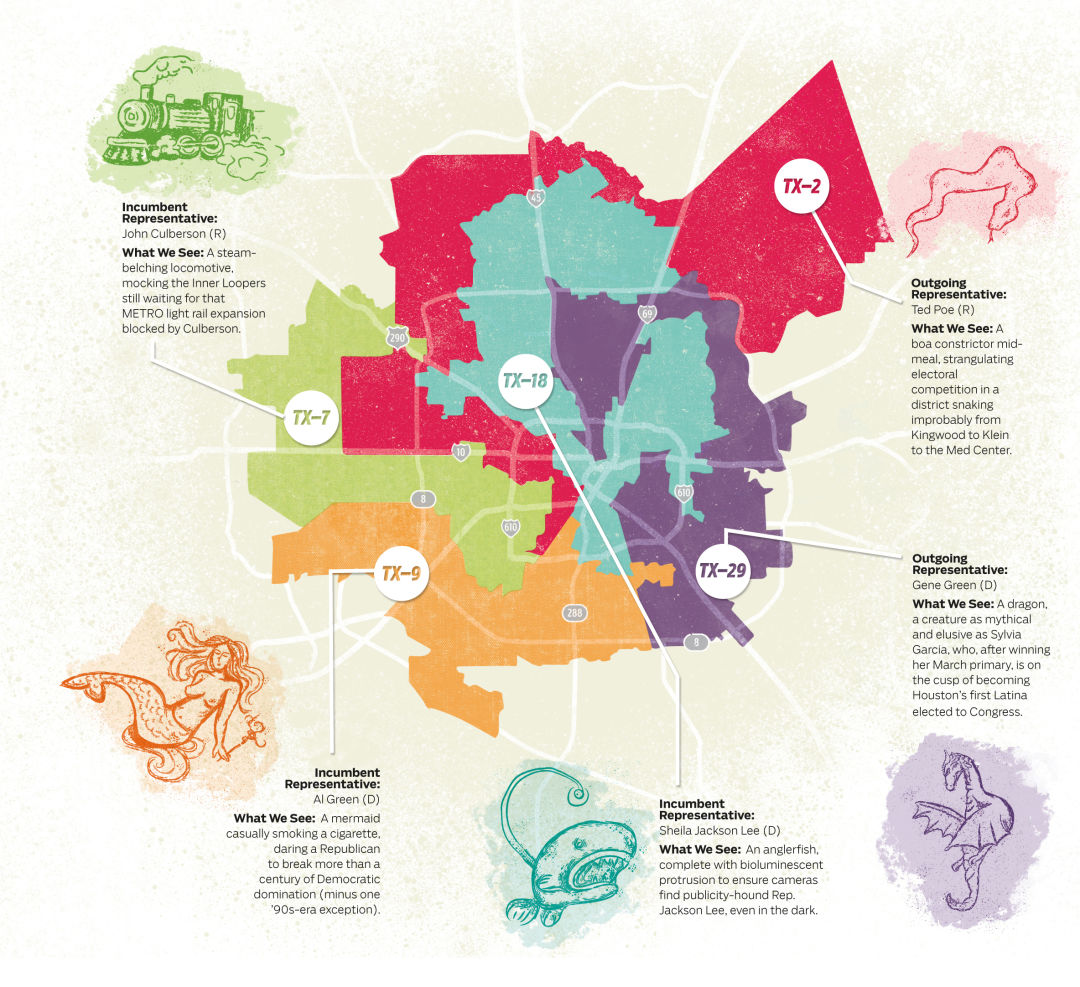 What We See When We Look At Houstons Gerrymandered