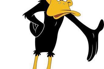Daffy duck kn918y