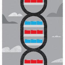 0612 amazon genome mud wp09wa