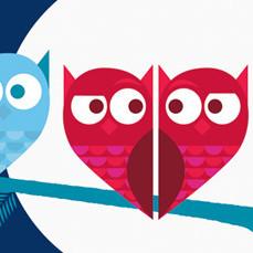 Owls 2 rgb thumb jj8xb3