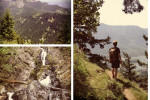Thumbnail for - Trail of the Month: Hamilton Mountain