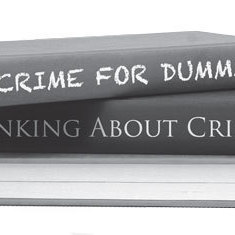 Crime for dummies s314l8