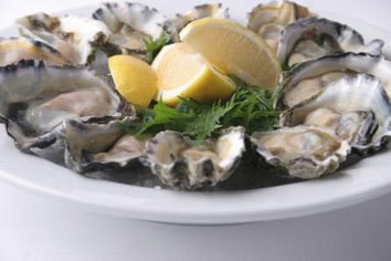 Oysters i55rcy