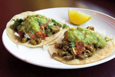 Tacos chukis seattle csmili
