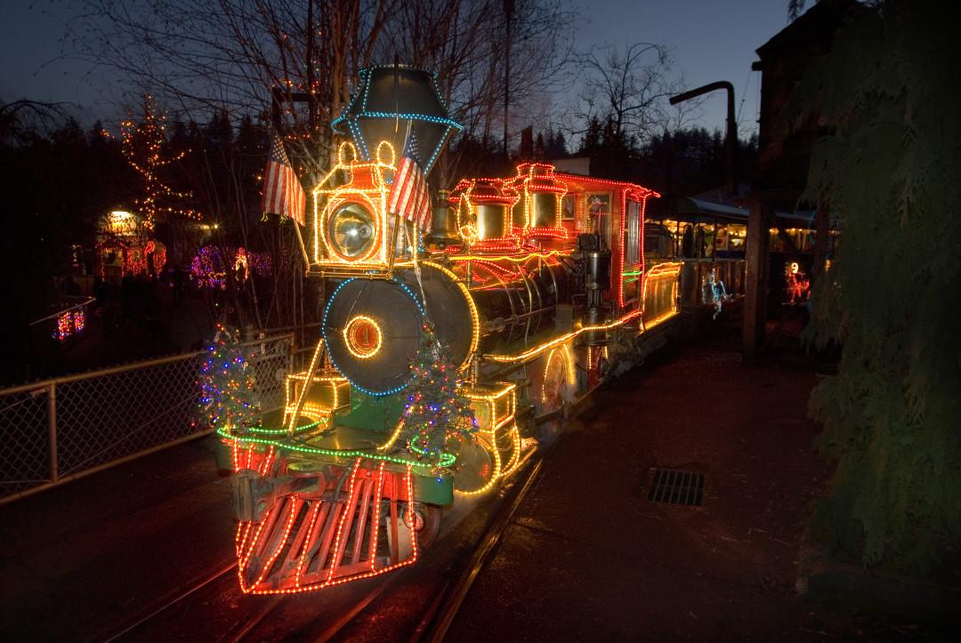 12 15 zoo lights i6mwsn