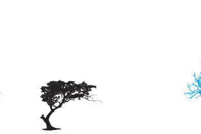 Tree zj1sgo