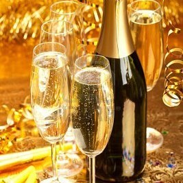 10651482 champagne  bottle and glasses ubvznq