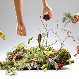 08 09 dec jan hand 115 foliage hands adb4x6