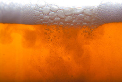 Beer close up 2 1 zy8rdn