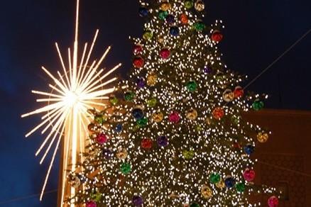 Seattle christmas tree zncrov