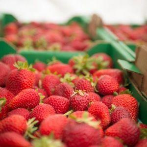 07 14 strawberries uno3zy