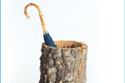 1112 habitat hallow stump umbrella edmxwn