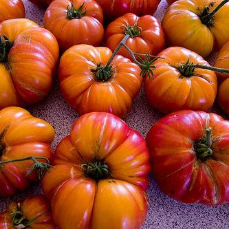 Tomatoes lpq3cp