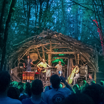 Pickathon woods egax4v