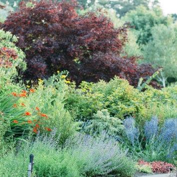 5 15 oregon garden g2mxwk