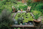 Thumbnail for - A Northwest Garden with Global Soul