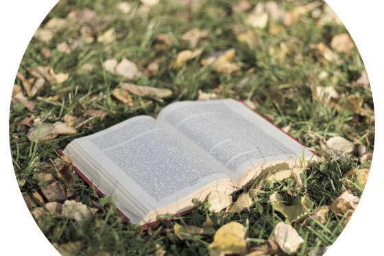 1012 ed note books qiinrn