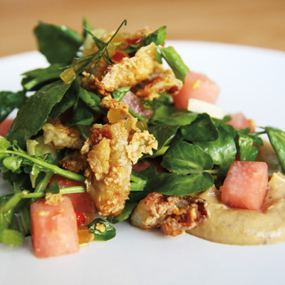 Fried chicken salad aviary wdn8mp