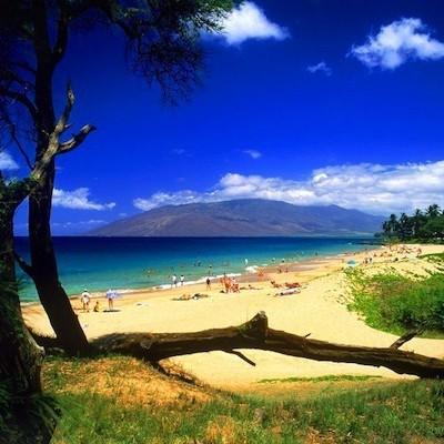 Kihei beach  maui  hawaii otlzii