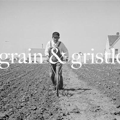 Grain gristle k3uvce