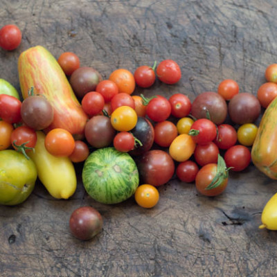 Tomatoes 101cookbooks ry11st