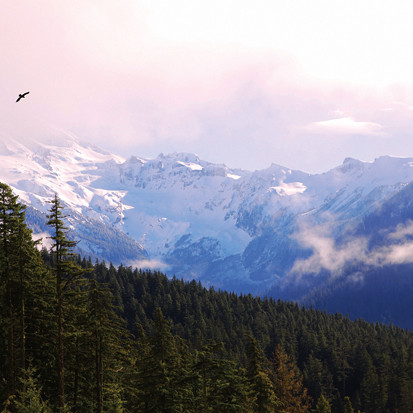 0812 mt rainier mowich lake n8hvii
