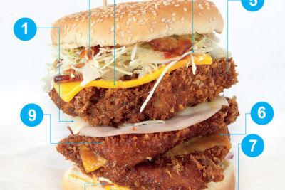 Mt fuji burger diagram b5khoh